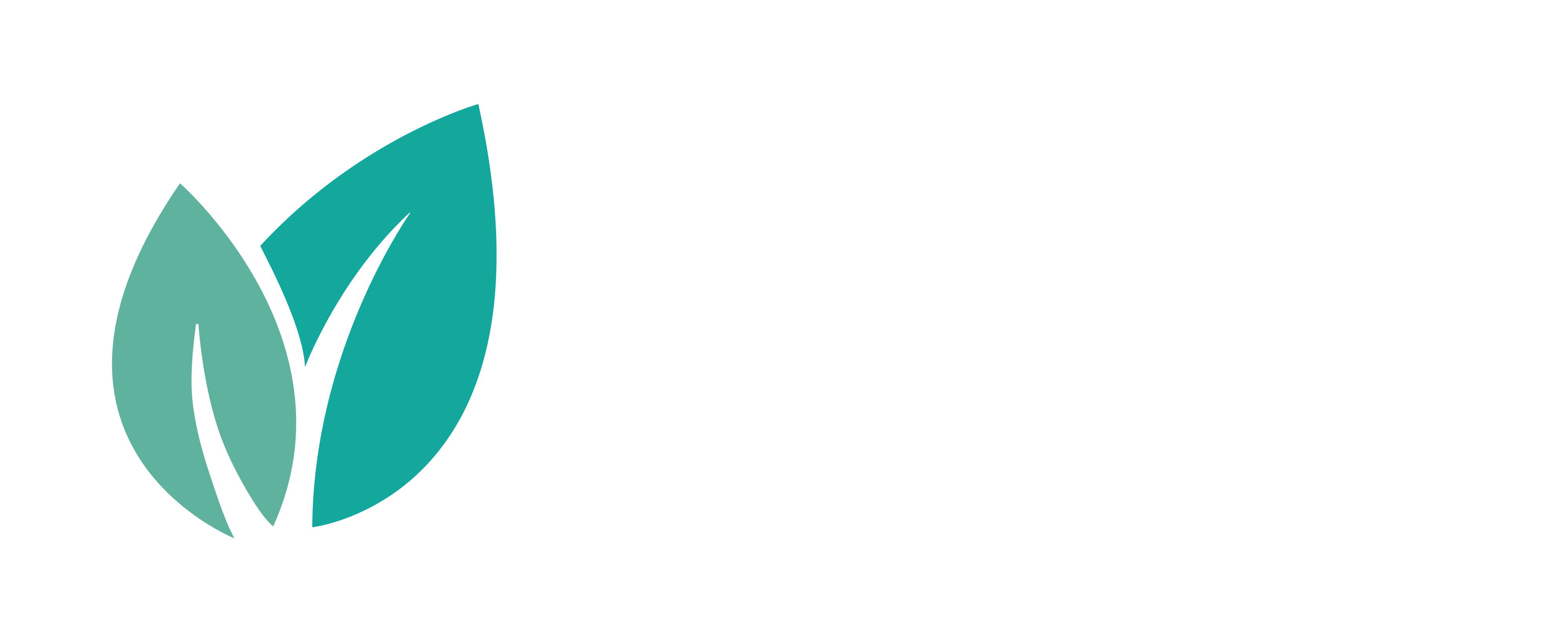 broom logo